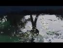 言の葉の庭 Rain - 秦基博(Motohiro Hata)  MAD-AMV
