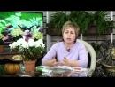 Био препараты 🌱 ГЛИОКЛАДИН ГАМАИР АЛИРИН 🌱 Видео инструкция по применению