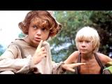 Приключения Тома Сойера и Гекльберри Финна (1982)