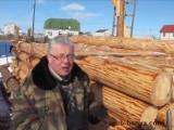 Выживание. Хозяйство своими руками. Сушка строительного леса в штабеле. Сруб своими руками. Часть 2