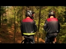 Даунхилл на велосипеде в лесу