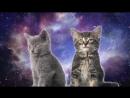 Space Cats — Magic