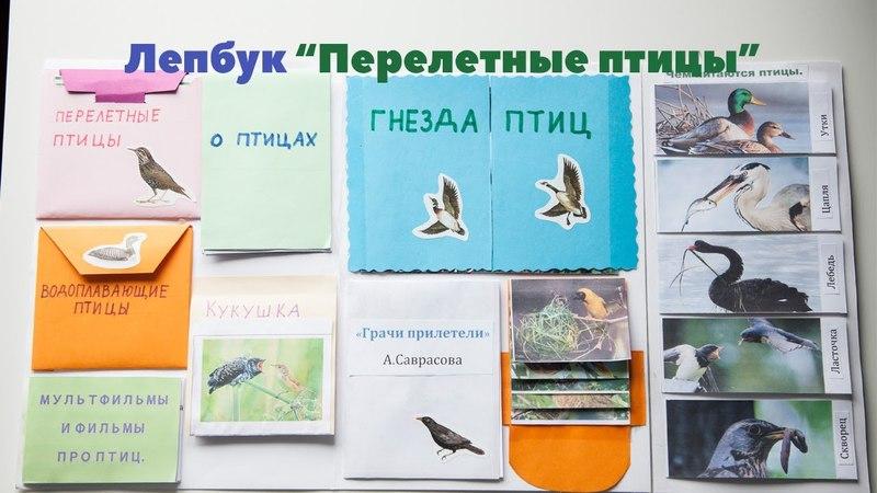 Лепбук Перелетные птицы. Интерактивная папка на тему миграции птиц. Весна.