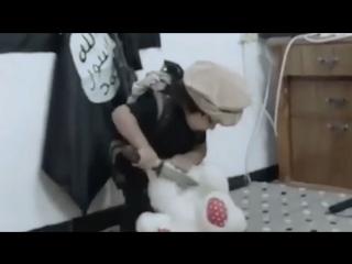 ВАЙС ТРЕНИРУЙТЕСЬ НА КОШКАХ. Как ИГИЛ учит детей головы отрезать