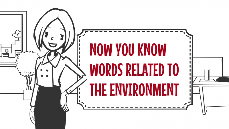 Useful words and phrases related to The Environment