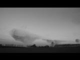 Захватывающие гипнотические движения сотен тысяч скворцов, летящих в огромных стаях