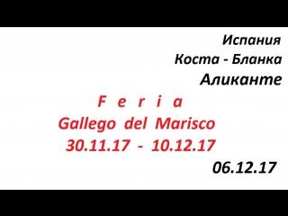 Испания,Коста-Бланка,город Аликанте выставка