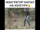 Макгрегор напал на кенгуру