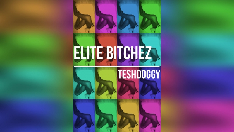 Teshdoggy - elite bitchez (продажа бита)