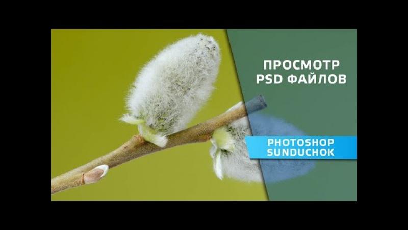Просмотр PSD файлов Простой способ просмотра больших файлов формата PSD