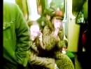 Легендарная бабка в метро