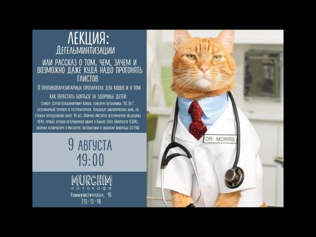 Паразиты у домашних животных. Сергей Коняев гл.врач АС Вет