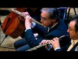 Beethoven. Symphony 7. Allegretto. Zubin Mehta.