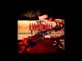 Vomitory - Terrorize Brutalize Sodomize (full album)