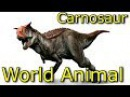 Jurassic World Animal l Planet Dinosaurs l Carnotaurusl Learning Video for Kids l Part 6