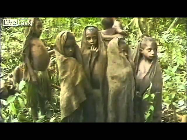 Tribe on Papua New Guinea meets white man for the first time. Filmed in 1976.