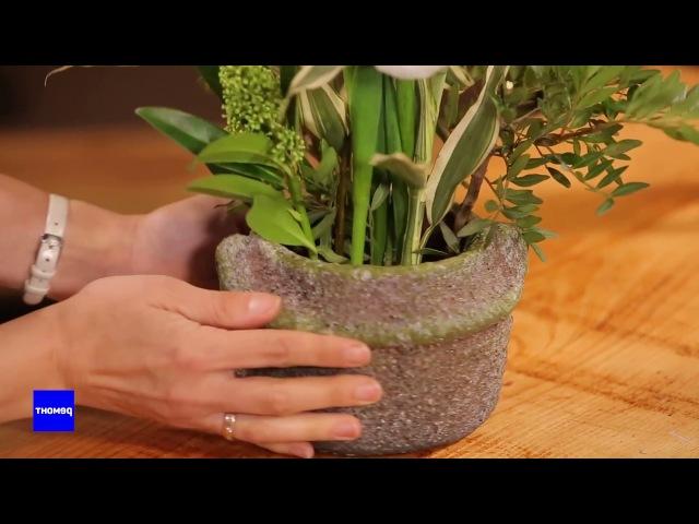 Основы икебаны. Вегетативный стиль во флористике. Вам букет