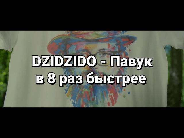 DZIDZIDO - Павук в 8 раз быстрее