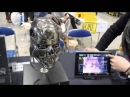 Movable head 【The Terminator】「ANIMATRONIC SKULL T 800 ver T2」