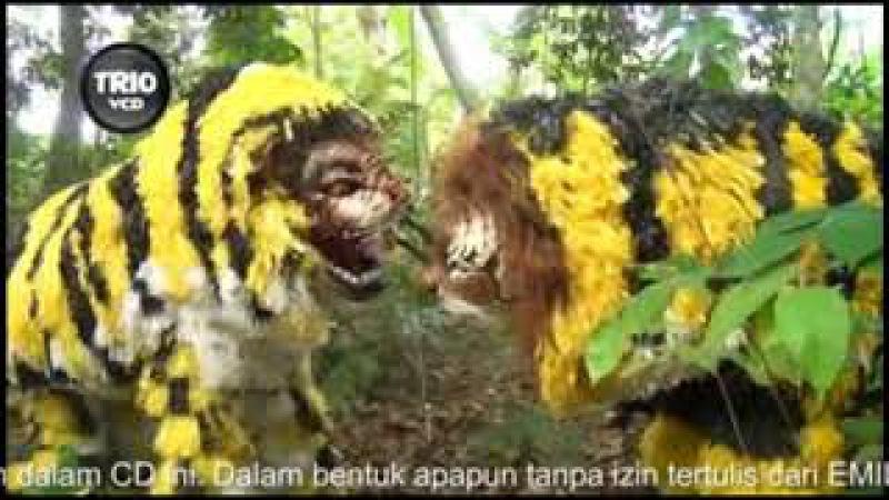 JARANAN CILIK - SURYO JATI ARUM - KUCING MBAH LELO - PART 4