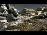 Das Rad Камни (2003) Rus Рус