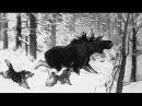 Охота на лося с лайками. Неожиданный трофей