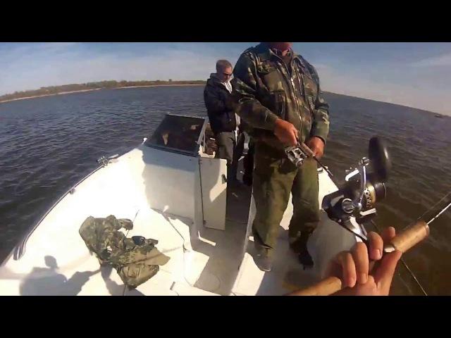 База Путина. Рыбалка в Астрахани – 2016 г.