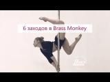 6 заходов в Brass Monkey   Учим с Kats
