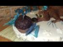 Торт из Ледникового периода