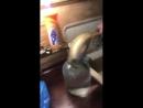 Video-03df8db08a2c71ddf97218b0c27f0ec0-V.mp4
