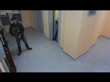 кража декоративных растений 18/02/2018_19:55_лифтовой холл 3 этажа