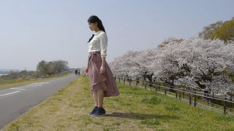 こゆりん ハルイチ。踊ってみた 桜満開 sm32996427