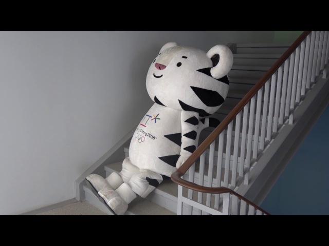 (KOR) 마스코트 이야기 4 The life of the PyeongChang 2018 Mascot
