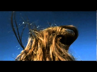 The Diving Bell and the Butterfly (Undercranked Hair)