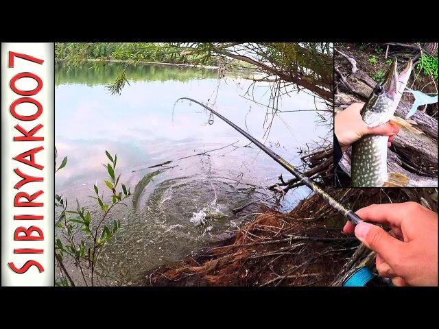 Что нужно рыбе.. Спиннинг в разных условиях. Воблер, блесна, поппер, неогруженная...