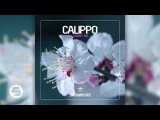 Calippo - Into the Beat