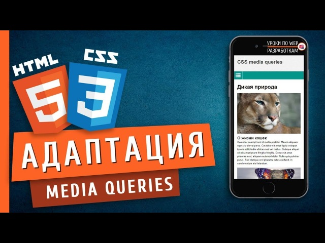 Media queries (Адаптация страниц) / Responsive Web Design Tutorial