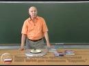 Лекция 9 Н П Калашников «Закон электромагнитной индукции» ktrwbz 9 y g rfkfiybrjd «pfrjy 'ktrnhjvfuybnyjq bylerwbb»