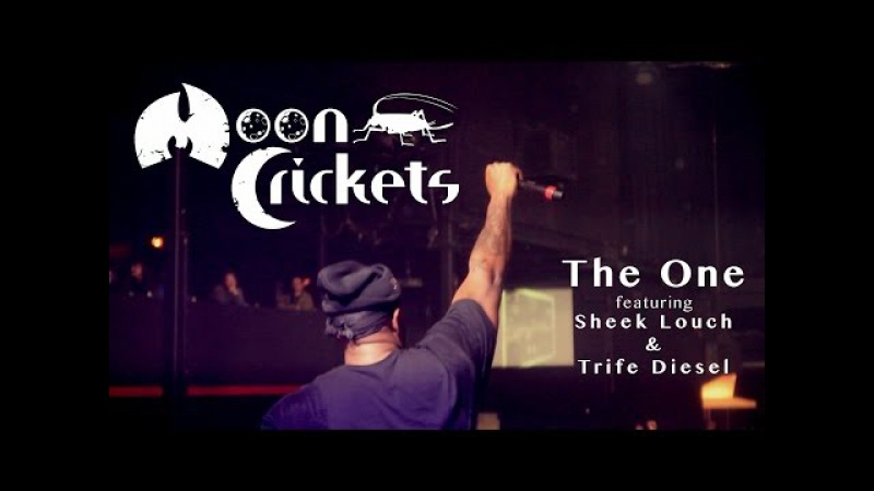 MOON CRICKETS - THE ONE (prod. by DJ Mercilless)