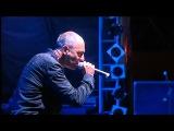 DAF Live @ Exit Festival 12 July 2012