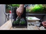 Nano Aquarium Dymax IQ5 Planted - Aquascape Setup