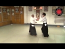 AIKIDO Fukakusa Shihan- Yokomenuchi Iriminage three versions .mp4