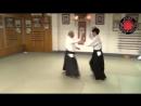 AIKIDO Fukakusa Shihan- Yokomenuchi Iriminage three versions .mp4