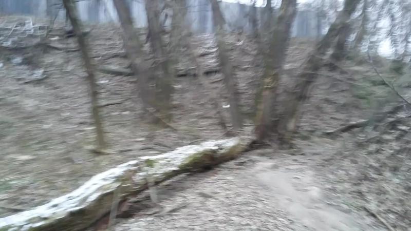 В поисках серпуховской узкоколейной железной дороги Коншина Н.Н.ноябрь 2017 год Останки старого моста узкоколейки у бывшей фабри