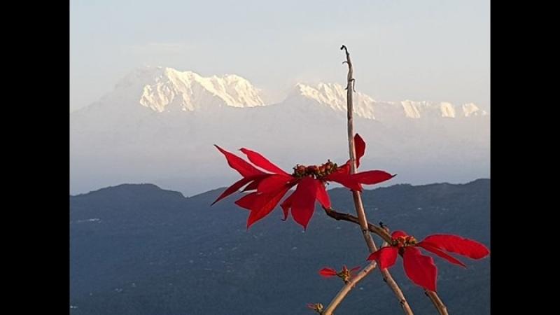 Непальские Похождения. Апрель 2018 г.