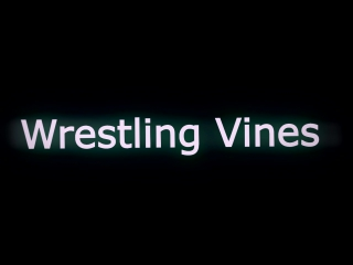 Kurt Angle, Dean Ambrose & Seth Rollins vs The Miz, Cesaro, Sheamus, Kane & Braun Strowman - TLC 2017