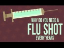 Why do you need to get a flu shot every year Melvin Sanicas