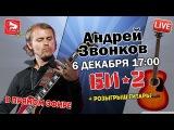 Pop-Music Live Гитарист Андрей Звонков (группа БИ-2)