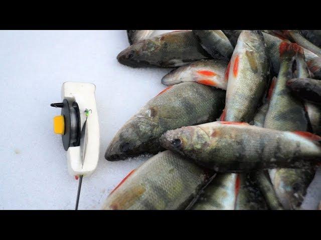 как ловить на вертикальную блесну видео подводная съемка