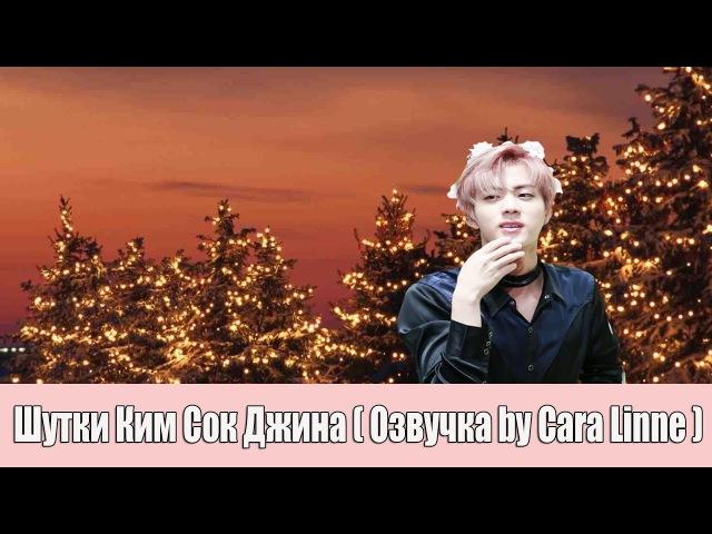 Шутки Ким Сок Джина - BTS ( by Cara Linne )